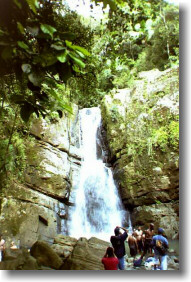 El_Yunque_Waterfall