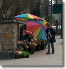 New_Haven_Flower_Vendor.jpg