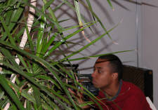 Lerone hides in the bushes with a video camera.